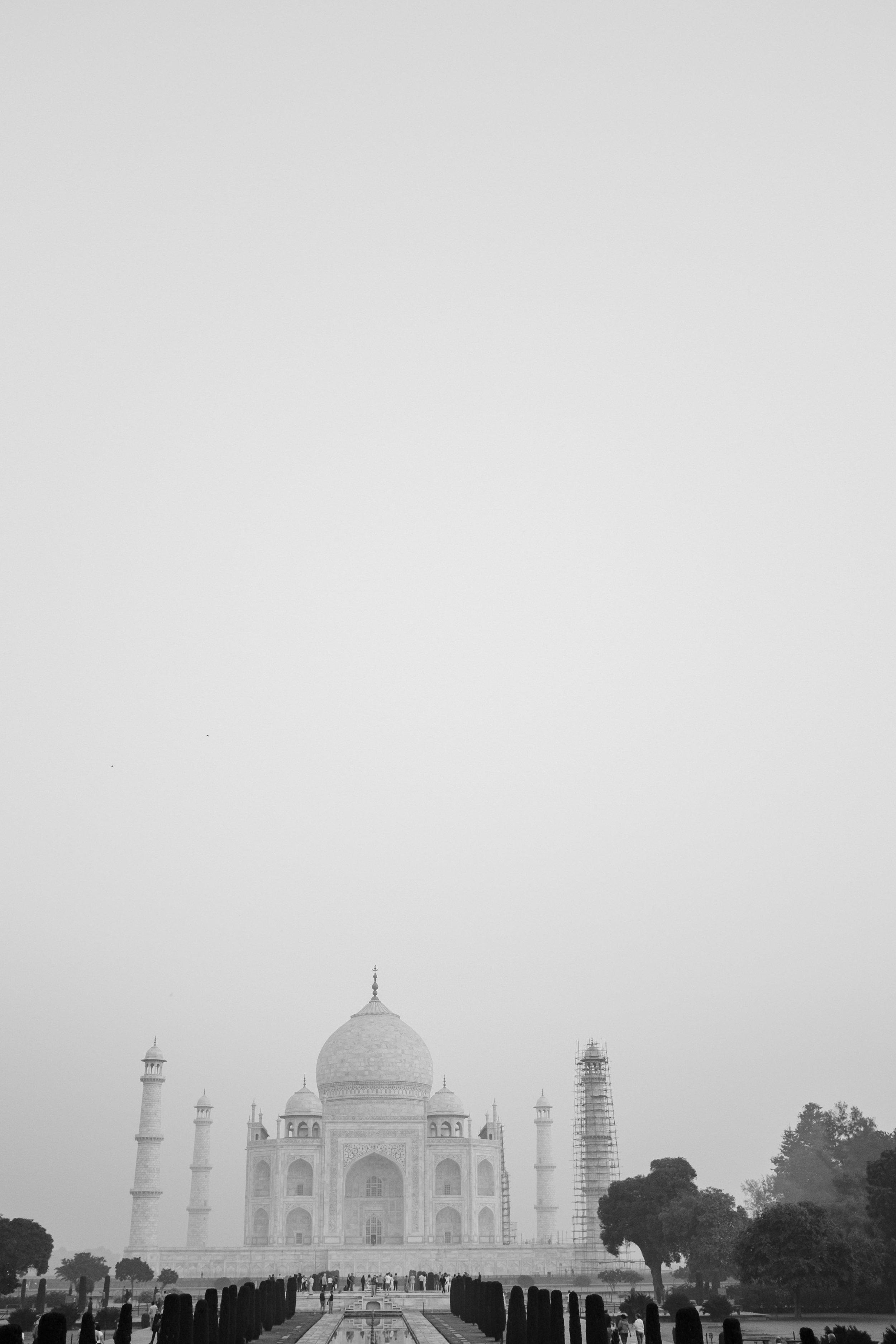 INDI3493.jpg