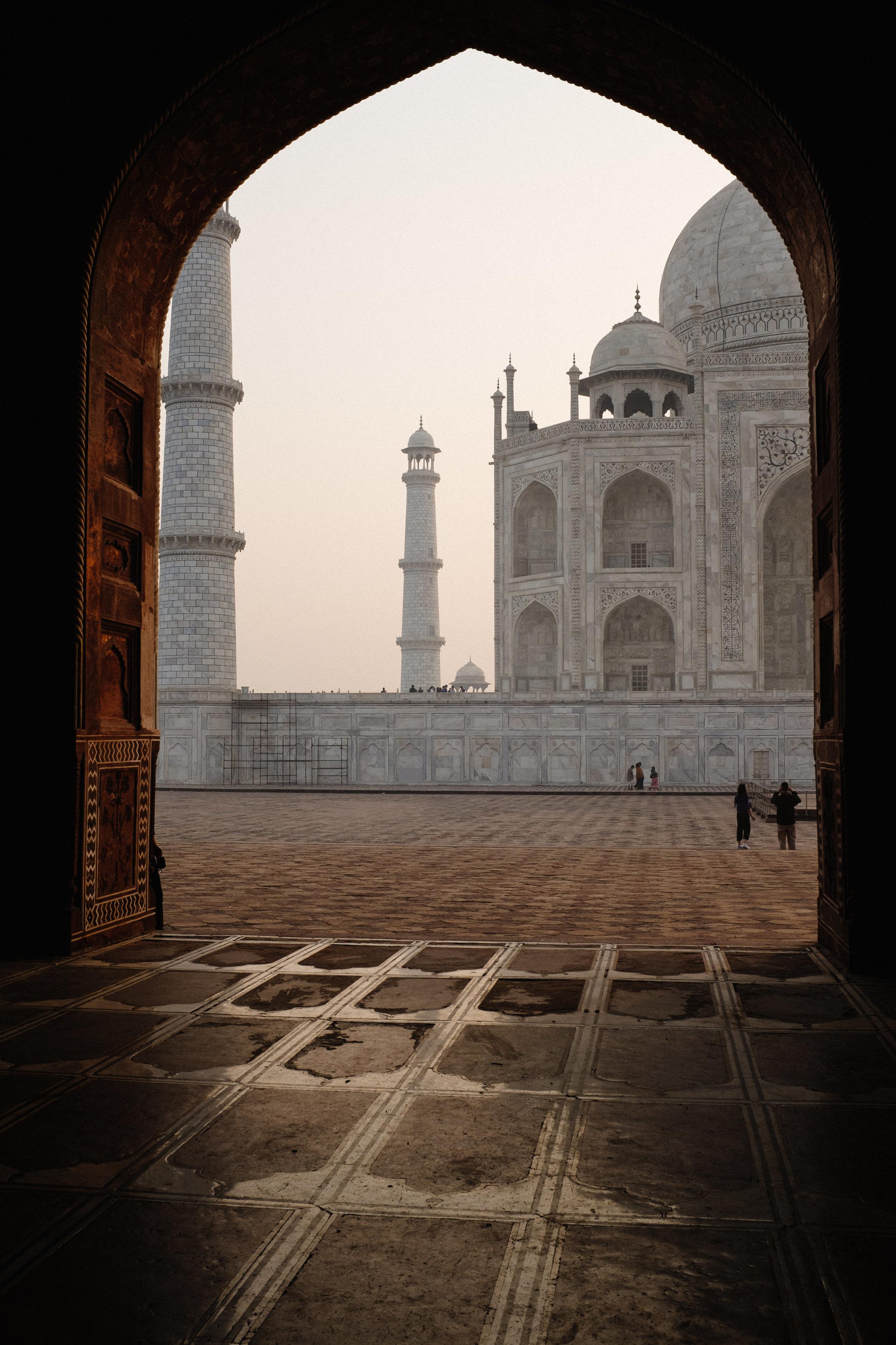 INDI3525.jpg