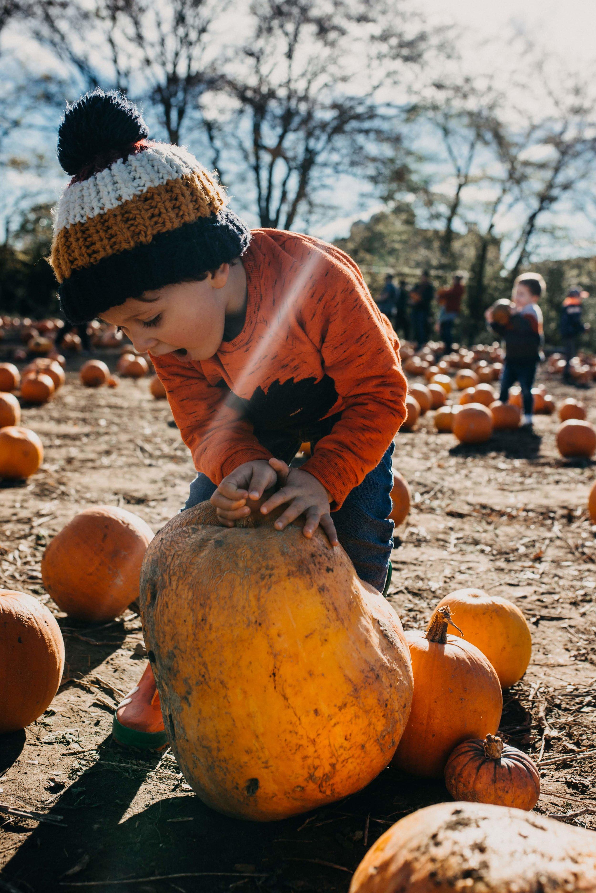 Pumpkin picking with Jesse, October 2018 - 29.jpg