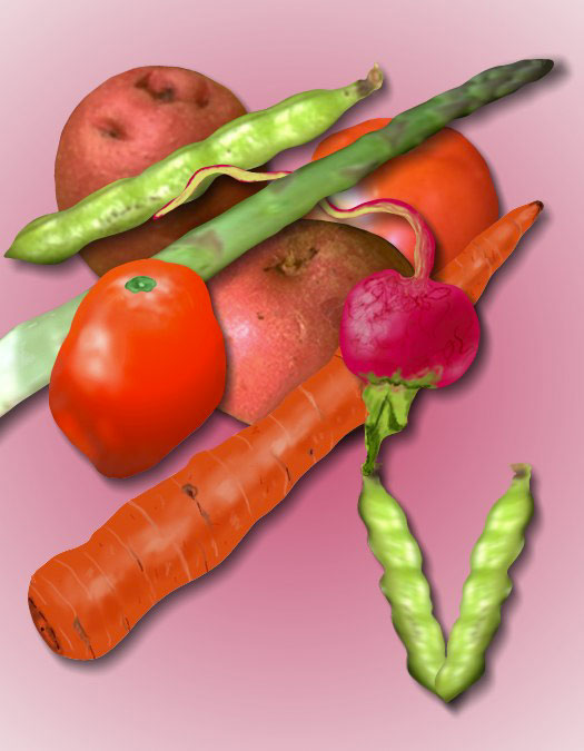 V/Vegetables Illusion, 1998  Digital Painting
