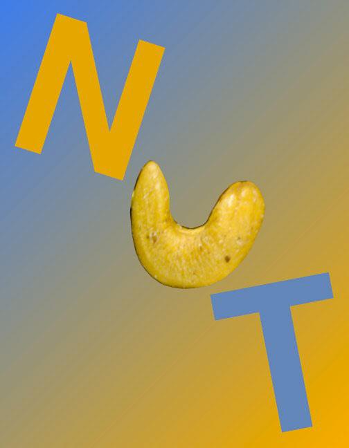 N/Nut as Nut, 1996  Digital Painting