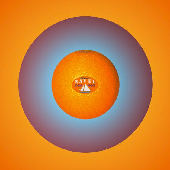 O/Navel Orange, 1995  Digital Painting