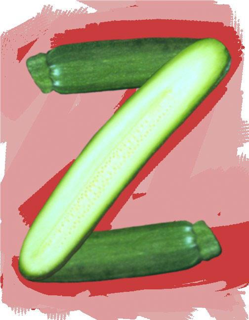 Z/Zucchini, 1994  Digital Painting