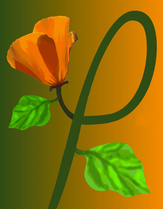 P/Poppy, 1997  Digital Painting