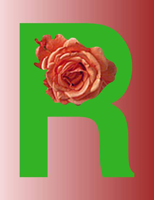 R/Rose Center, 1998  Digital Painting