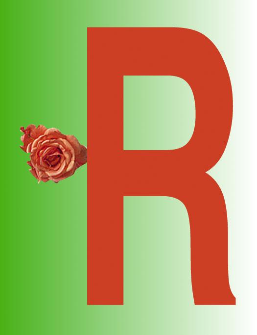 R/Rose, 1998  Digital Painting
