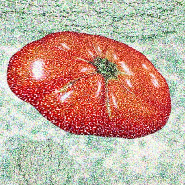 Tomato Elipse in Broccoli Clouds, 2003  Digital Painting