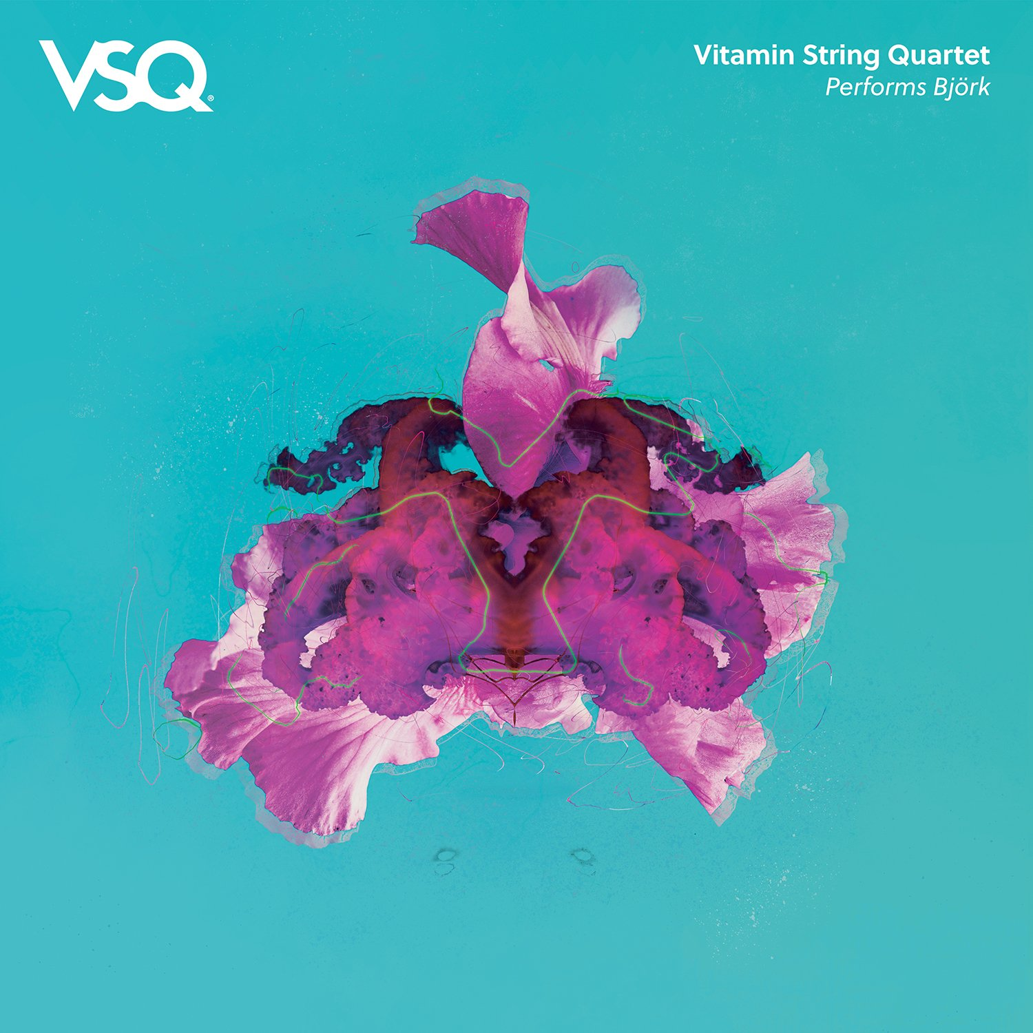 Vitamin String Quartet performs Bjork