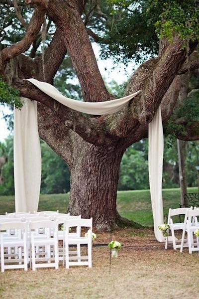 TreeWithWhiteRIbbon