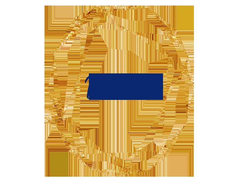 portfoliogold.png