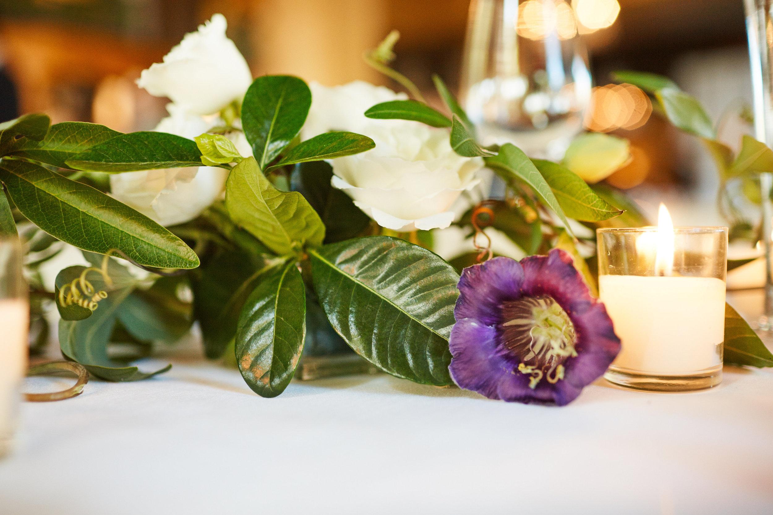 Wedding_Aschauer_456.jpg