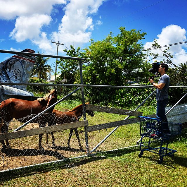 A lot of long distance driving today with @generalelectric in #puertorico , but we came across this interesting site. . . . . . #filmmaking #videoproduction #videography #video #travel #documentary #horsesofinstagram #panorama #aircraft #teamcanon #xlpuertorico