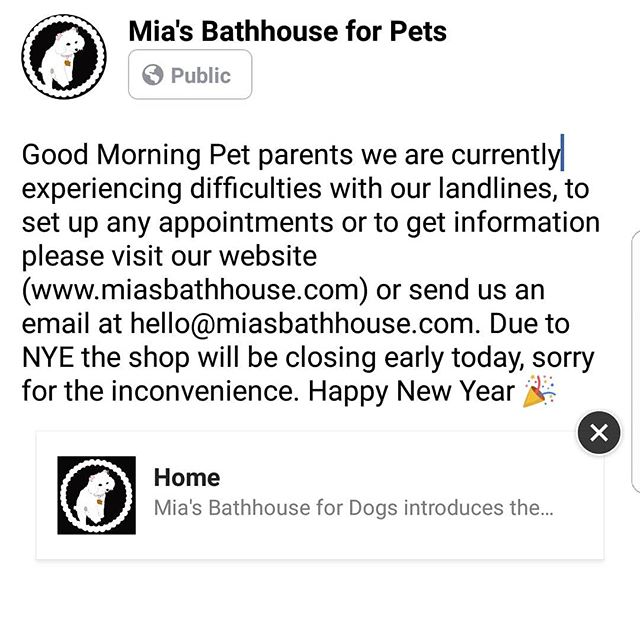 Good Morning Pet parents we are currently experiencing difficulties with our landlines, to set up any appointments or to get information please visit our website (www.miasbathhouse.com) or send us an email at hello@miasbathhouse.com. Due to NYE the shop will be closing early today, sorry for the inconvenience. Happy New Year 🎉 #dogs #cats #doggrooming #catgrooming #cats_of_instagram #dogsofinstagram #petstagram #petsofinstagram #harlem #pits #poms #chihuahuasofinsta #winter #BULLDOGS #bully #bullmastiffs #greatdanes #dalmations #schnauzer #deals