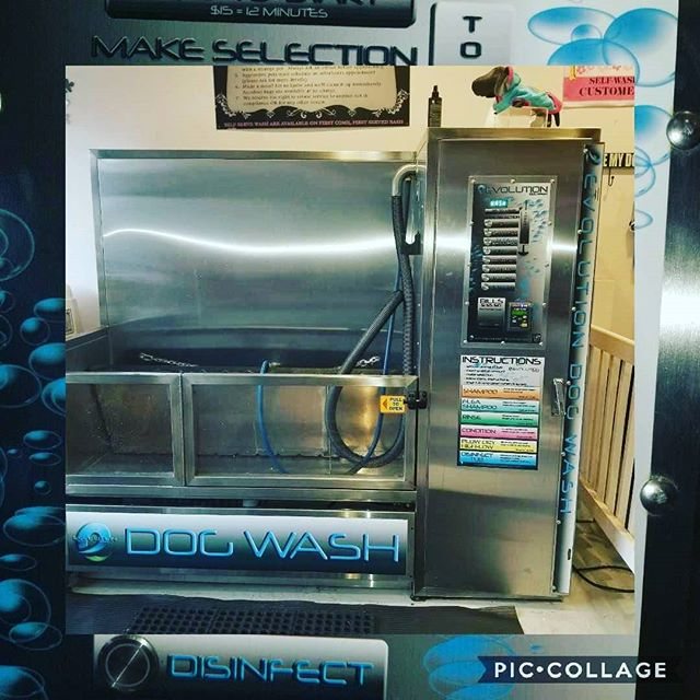 Do you see this machine before? Is for wash you dog, come and visit us and see how your can save money and keep you house and dog clean.