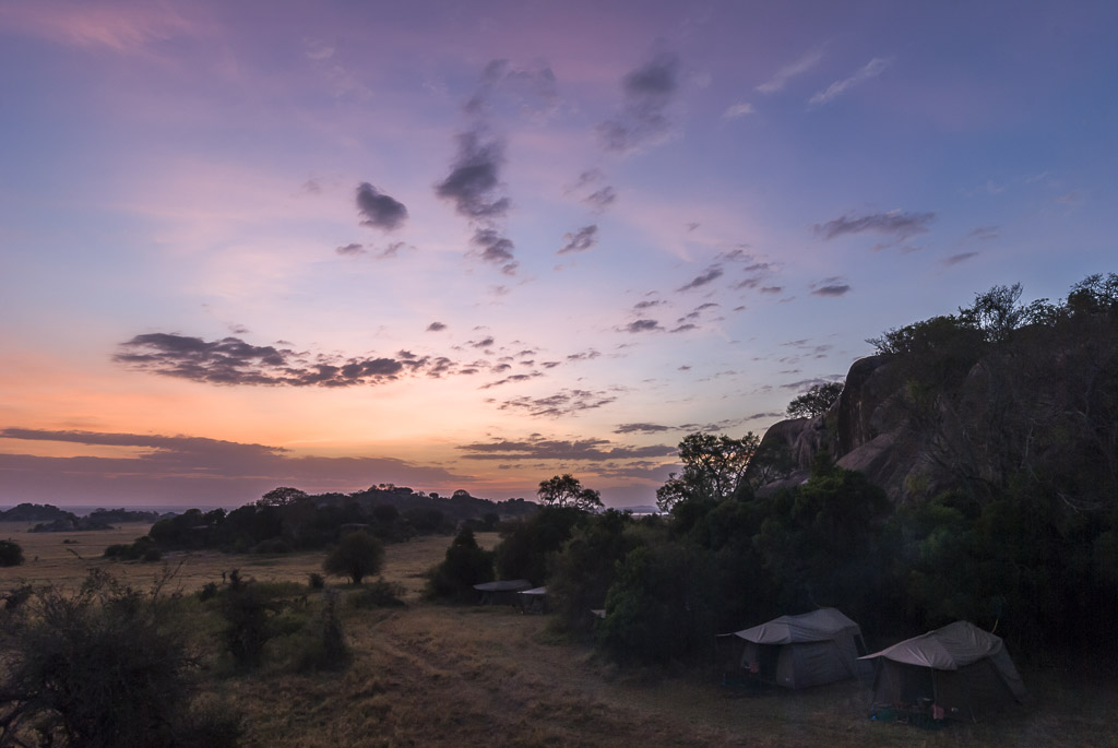 Serengeti Bush Camp Sunrise 1.jpg