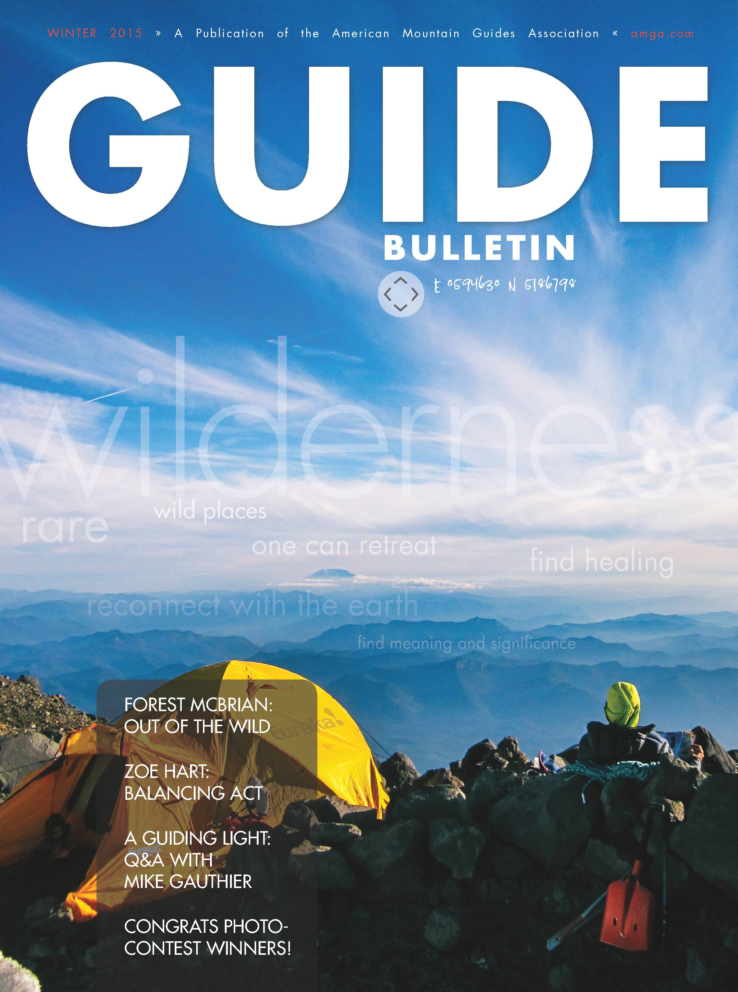 AMGA Wilderness Photo Contest Rainier Cover.jpg