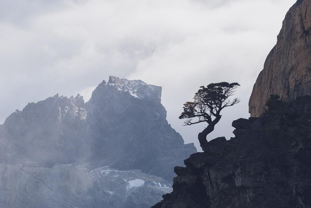 20150214_CMeder_D80_Patagonia-479.jpg