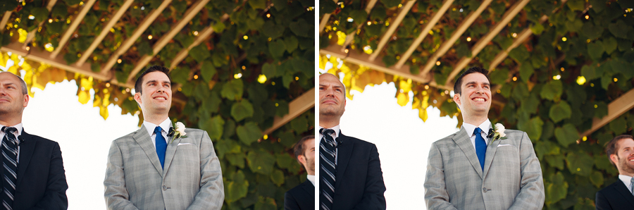 Hawks-View-Cellars-Wedding-Photographs-036