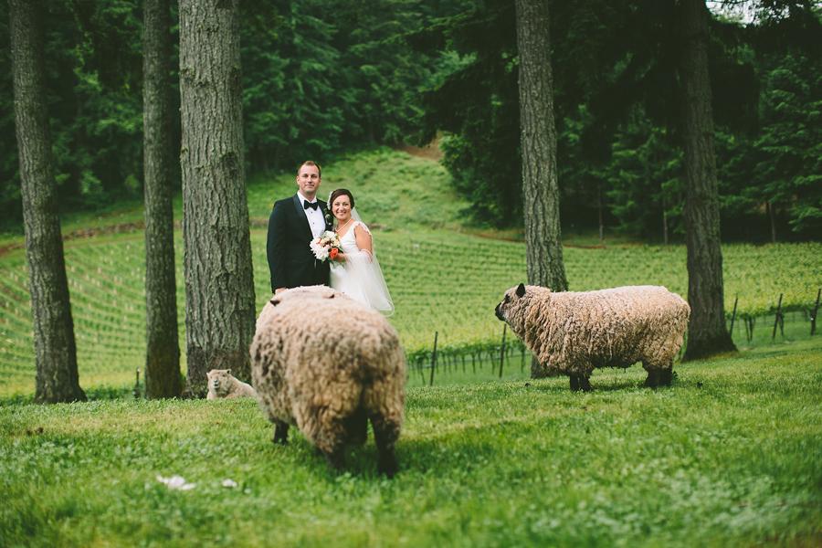 Dundee-Vineyard-Wedding-1.jpg