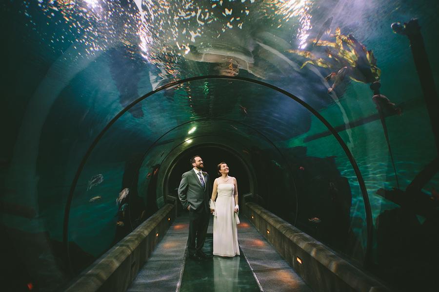 The-Oregon-Coast-Aquarium-Wedding-16.jpg