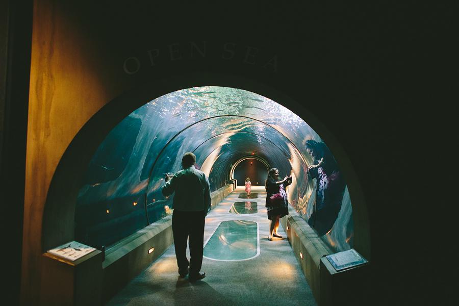 The-Oregon-Coast-Aquarium-Wedding-42.jpg