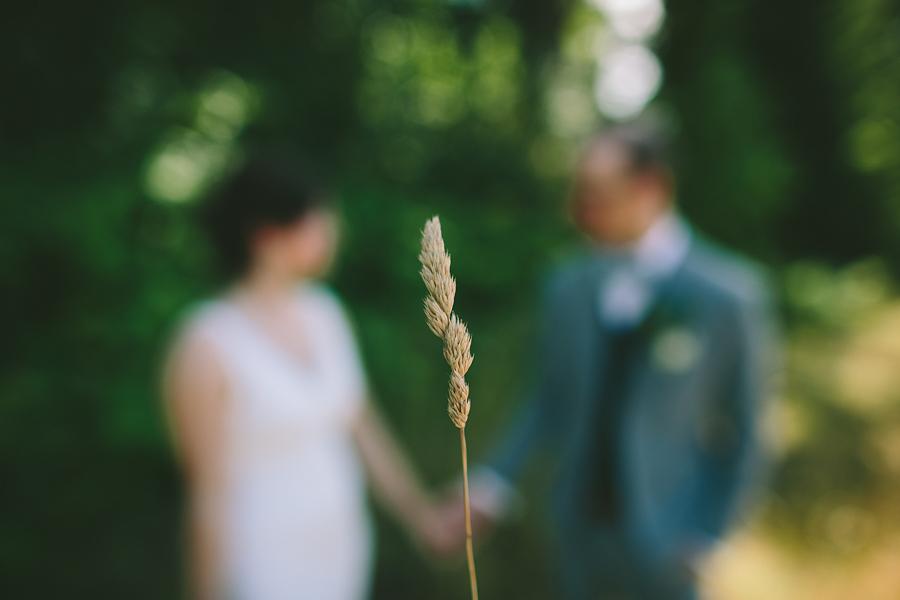Mt-Hood-Organic-Farms-Wedding-Photographs-3.jpg