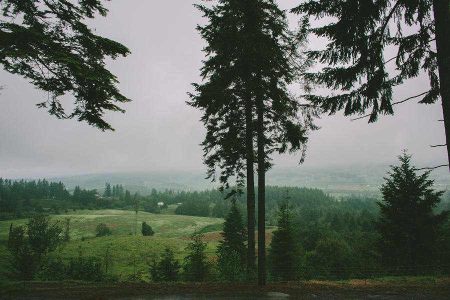 Dundee-Oregon-Wedding-Photographs-17.jpg