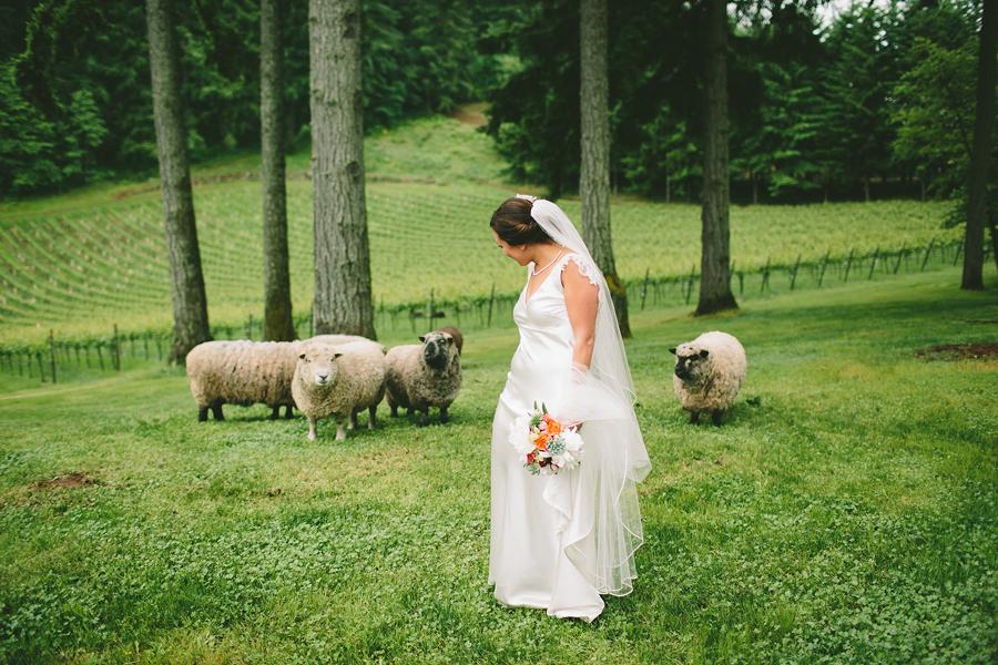 Dundee-Oregon-Wedding-Photographs-39.jpg