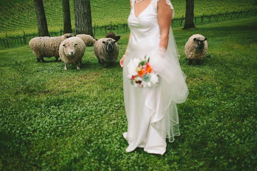 Dundee-Oregon-Wedding-Photographs-42.jpg
