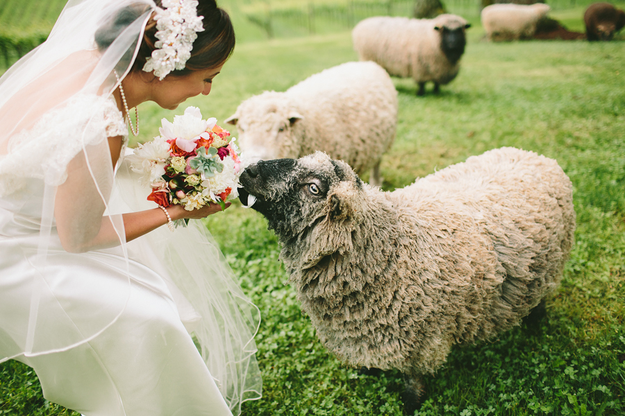 Dundee-Oregon-Wedding-Photographs-43.jpg