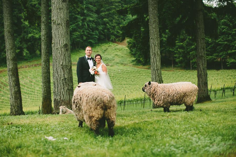 Dundee-Oregon-Wedding-Photographs-46.jpg