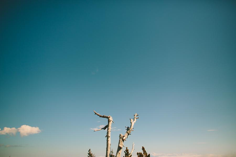 Timberline-Lodge-Wedding-28.jpg