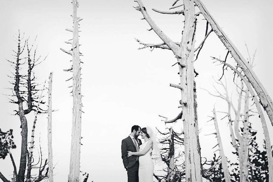 Timberline-Lodge-Wedding-82.jpg