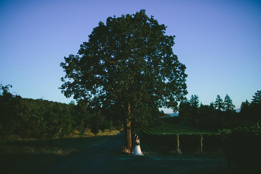 Vista-Hills-Vineyard-Wedding-Photographs-1.jpg