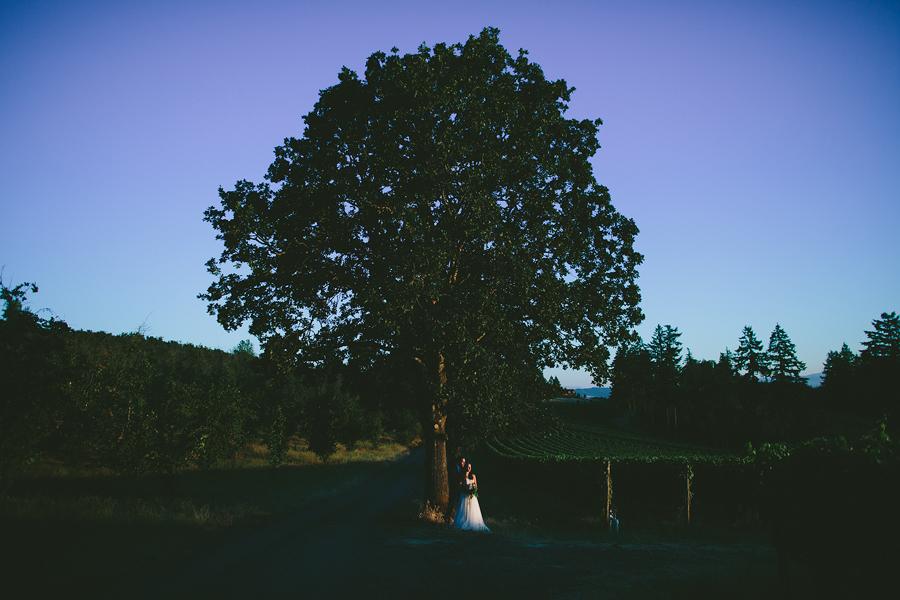 Vista-Hills-Vineyard-Wedding-Photographs-53.jpg