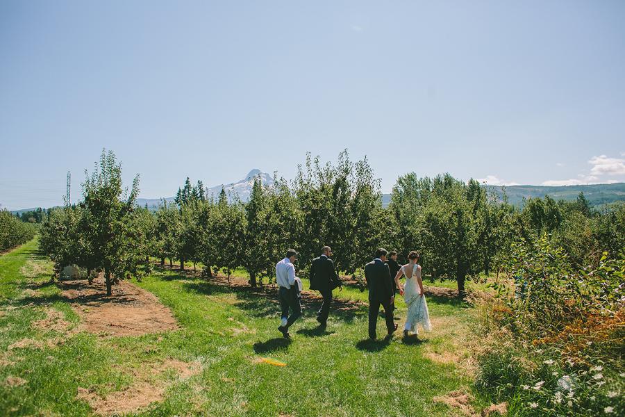 Clarkes-Mountain-Estate-Wedding-25.jpg