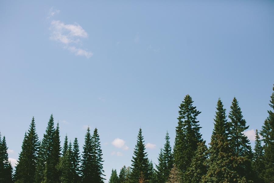 Clarkes-Mountain-Estate-Wedding-41.jpg
