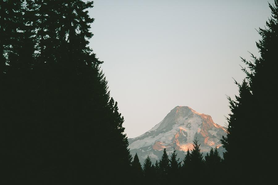 Clarkes-Mountain-Estate-Wedding-88.jpg