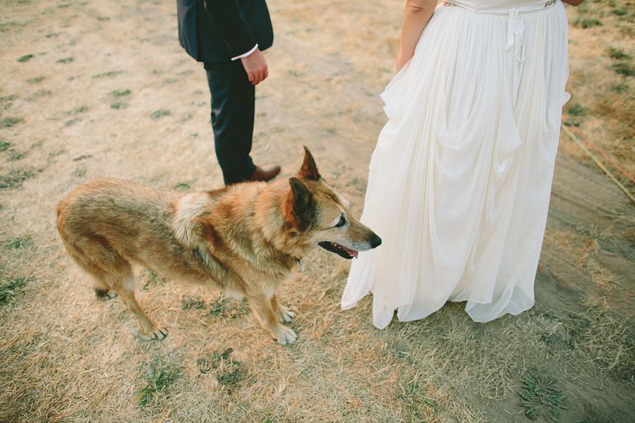Willamette-Valley-Wedding-Photographs-70.jpg