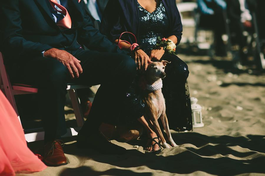 Pacific-City-Wedding-54.jpg