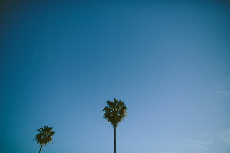 Santa-Monica-Pier-Engagement-Photographs-10.jpg