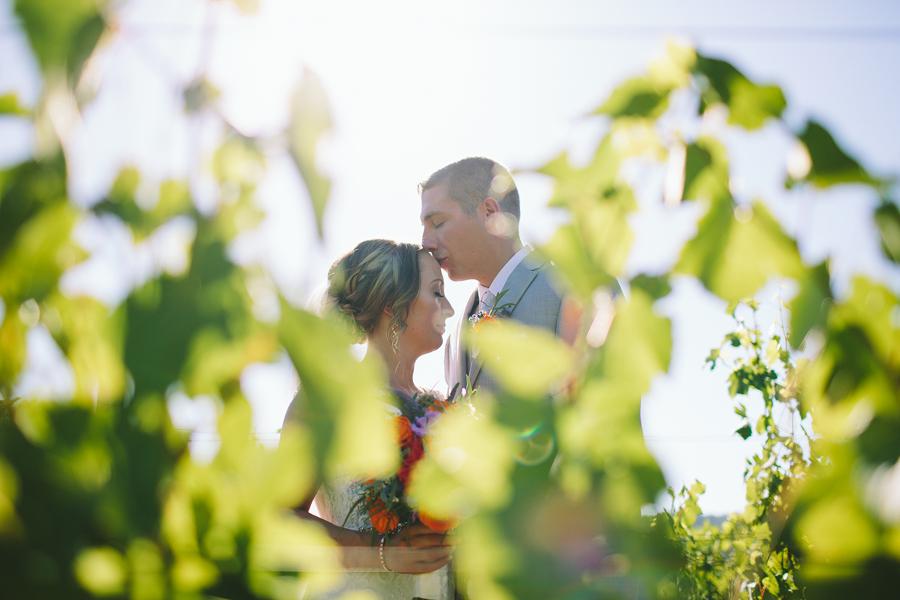 Maysara-Winery-Wedding-3.jpg