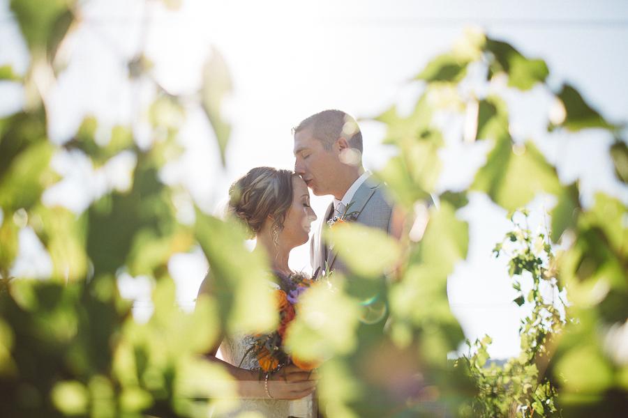 Maysara-Winery-Wedding-Photographs-44.jpg