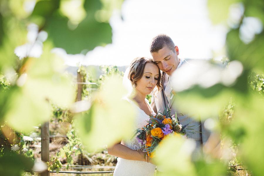 Maysara-Winery-Wedding-Photographs-47.jpg