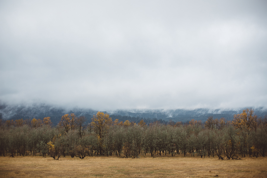 Horsetail-Falls-Engagement-Photos-14.jpg