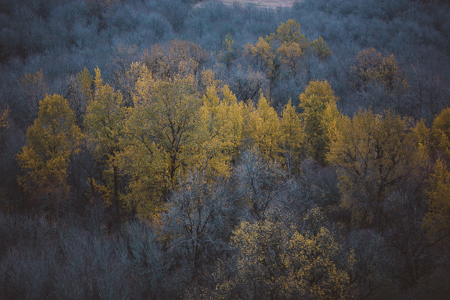 Horsetail-Falls-Engagement-Photos-28.jpg