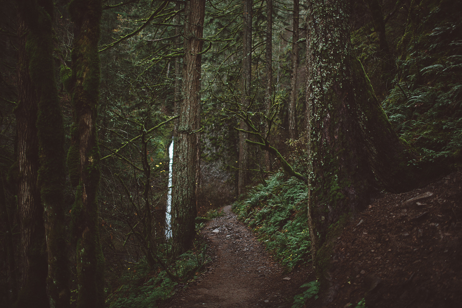 Horsetail-Falls-Engagement-Photos-35.jpg