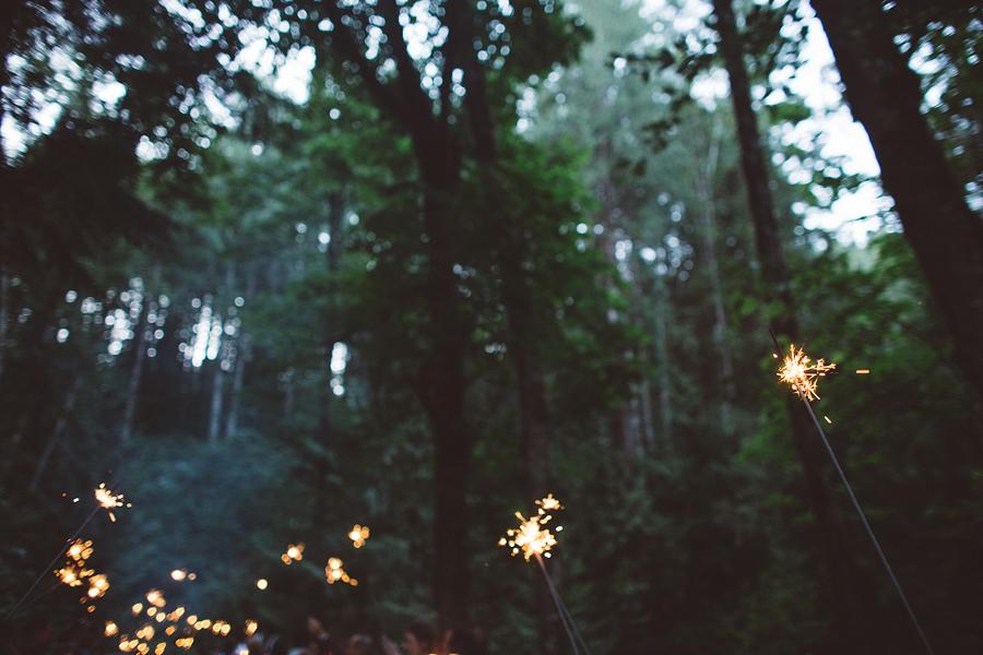 Hornings-Hideout-Wedding-Photos-160.jpg
