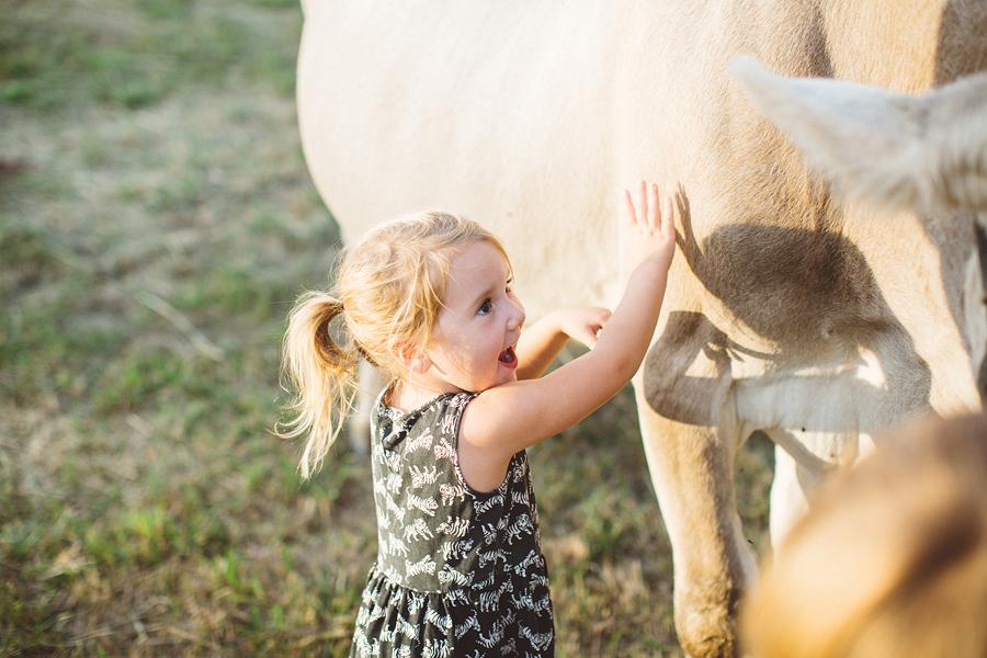 Raw-Dairy-Photographs-043.JPG
