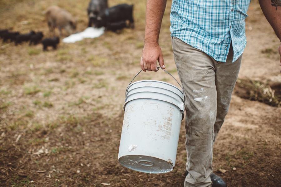 Raw-Dairy-Photographs-085.JPG